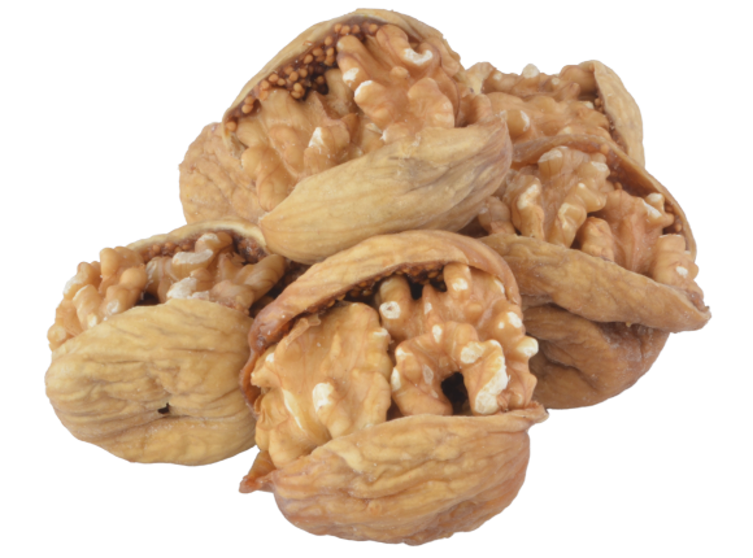 Picture of MEVLANA FIG WITH WALNUT